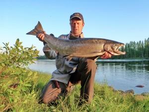 Risto - Kojamo 9,1kg - E20 Käärme Vaappu - Kalixälv